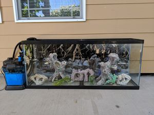 55 gallon fish tank for Sale in Vancouver, WA