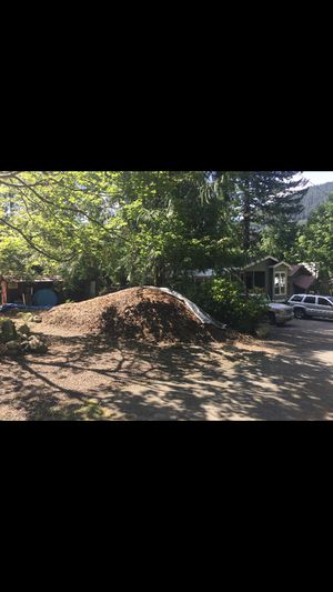 Free chipped tree bark/mulch for Sale in Skykomish, WA