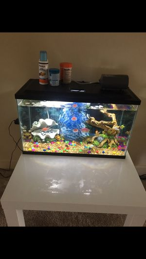 10 gallon aquarium with filter in good condition for Sale in Silver Spring, MD