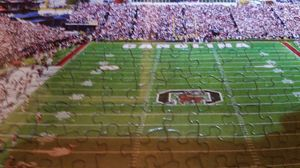 USC GAMECOCKS Williams Brice Stadium Framed Puzzle Picture - Very Cool for Sale in West Columbia, SC