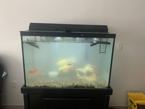 60 gallons aquarium with fish and a turtle for Sale in Detroit, MI