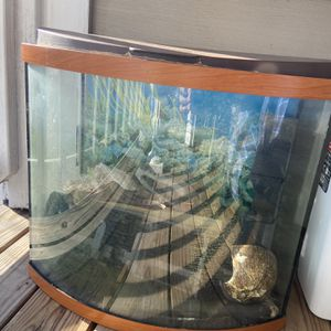 20 Gallon Tank for Sale in Fairfax, VA