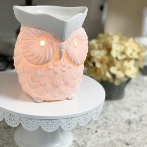Whoot Scentsy Warmer for Sale in Deer Park, TX