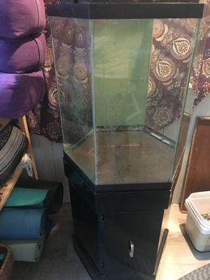 35 gal Hexagon aquarium tank setup for Sale in Chelmsford, MA