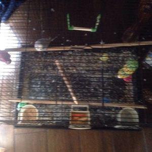 Bird Cage for Sale in Elk Grove, CA