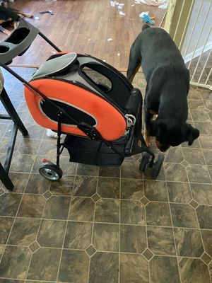 Like new dog stroller or cat stroller and backpack for Sale in North Ridgeville, OH