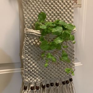 Macrame Hanging Wall Plant Holder for Sale in Renton, WA