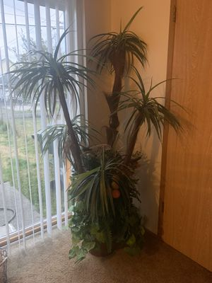 Artificial Palm Tree for Sale in Everett, WA
