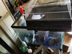 Turtle Fish Pet Clean Water Tank 20 gallons for Sale in Lynwood, CA