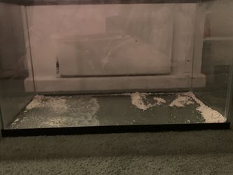 10 Gallon Fish Tank for Sale in Westminster,  CA