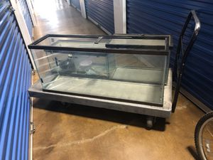 4 fish tanks, take all for $150 OBO for Sale in Chicago, IL