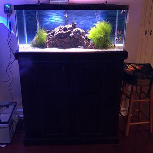 Aquarium 40 Gallon Full Setup for Sale in Brookhaven, GA