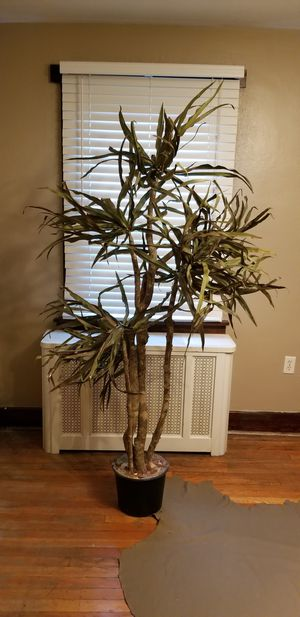 Artificial Floor Plant for Sale in West Mifflin, PA