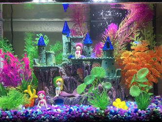 10 Gallon Fish Tank for Sale in San Jose,  CA