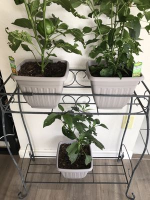 black metal plant stand with 2 shelves for Sale in Denver, CO