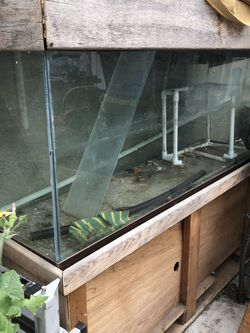 100 Gallon Aquarium for Sale in Concord,  CA