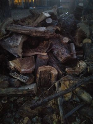 Dry wood lots for 20$ for Sale in Wheat Ridge, CO