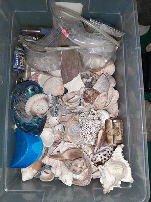 Shells & fish tank supplies for Sale in Plano, IL