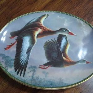 Bradford Exchange, Jim Hautman's Classic Waterfowl Collection, Plate 7275 A, Black Bellied Whistling Ducks Daybreak Flight for Sale in Menifee, CA