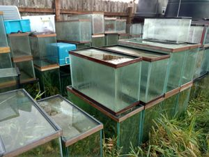 Lots of fish tanks for Sale in Aberdeen, WA