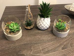 Succulent decorations for Sale in Miami, FL