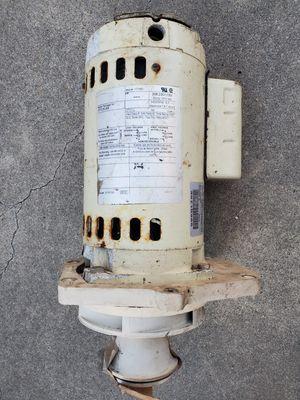 Pentair pool pump electric motor 177450 motor whisperflo for Sale in Hacienda Heights, CA