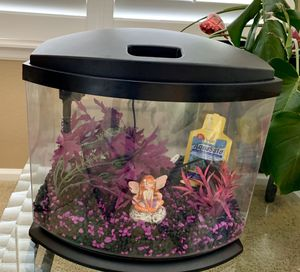 Small Aquarium and Supplies for Sale in Aurora, CO