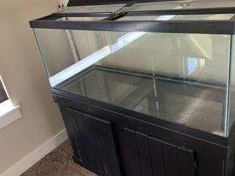 75 Gallon Fish Tank Lot for Sale in Sumner,  WA
