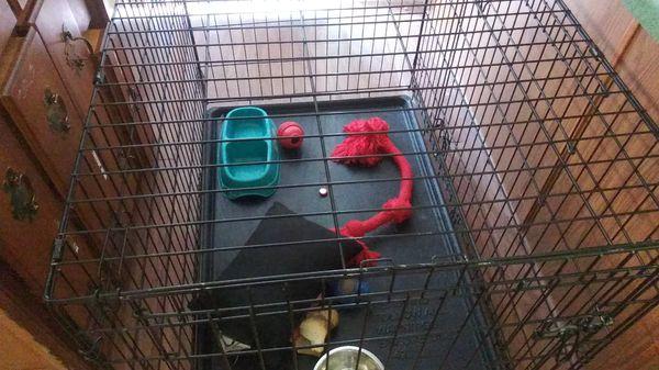 "$121 Dog Kennel 42"" for sale"