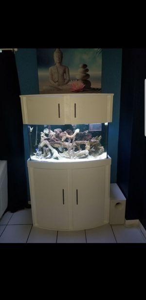 46g salt water aquarium for Sale in Miami, FL