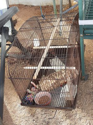 Bird cage used only 3 months for Sale in Pearblossom, CA