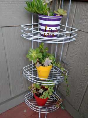 Plant Corner stand with small pots and succulents.. for Sale in Vista, CA