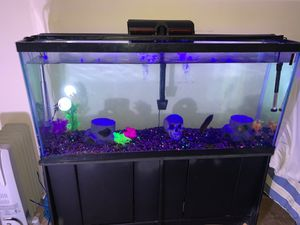 55 inch Fish tank . (Has minor scratches) for Sale in Clinton, MD