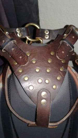 Small dog gladiator leather harness for Sale in Clearwater, FL