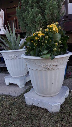 Masetas de concreto, flowers pots solid concrete for Sale in Dallas, TX
