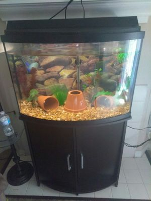 36 gallon bow front complete setup for Sale in Oldsmar, FL