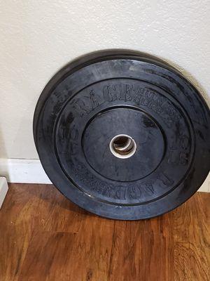 10lb Rage Bumper Plate Pair for Sale in Glendale, AZ