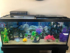 75 gallon fish tank with all decorations/fish included for Sale in Beaumont, CA