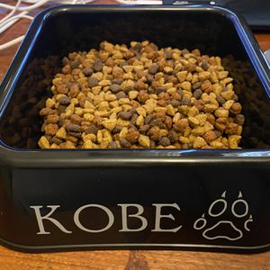Personalized Dog Bowls for Sale in Greensboro, NC