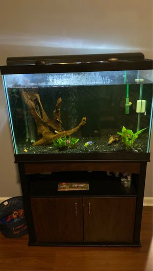 65 gallon tank - great condition. Selling with everything . $500 OBO for Sale in Mauldin, SC
