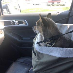 Dog Car Seat for Sale in Santa Ana, CA