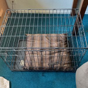 Dog Crate for Sale in Pismo Beach, CA