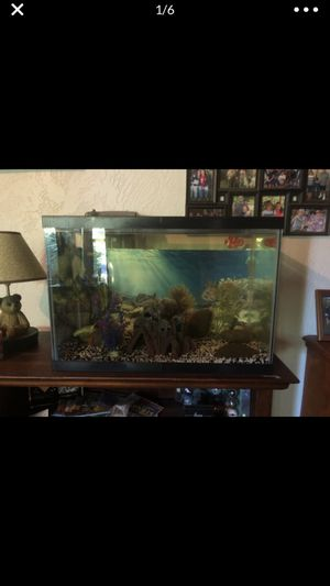 35 gallon fish tank with fish for Sale in Modesto, CA