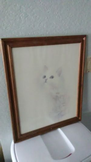 medium size cat picture frame for Sale in Anaheim, CA