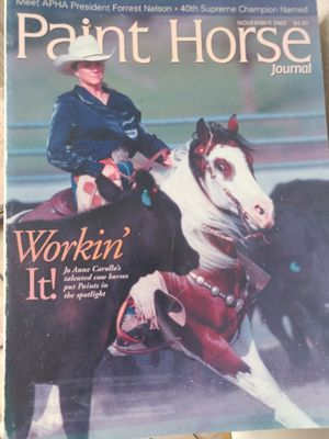 Paint horse magazine for Sale in Saint Robert, MO