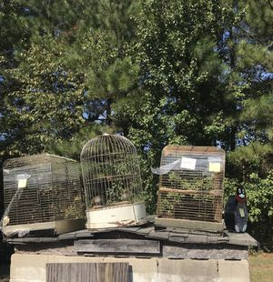 3 different bird cages for Sale in Raleigh, NC