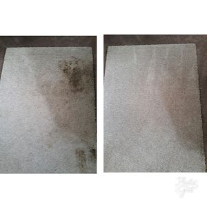 Carpet Cleaner for Sale in Hyattsville, MD