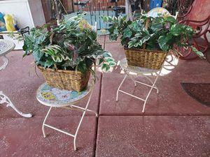 fake plant for Sale in Avondale, AZ