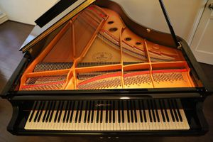 """6'2"""" Ritmüller grand piano with silent system for Sale in West Hollywood, CA"""