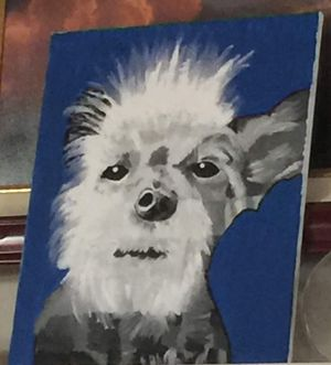 Pet paintings for Sale in Houston, TX
